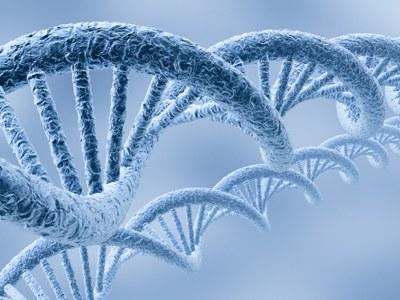 Clopidogrel: genotypering overbodig