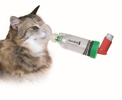 134 nieuwe diergeneesmiddelen in 2015