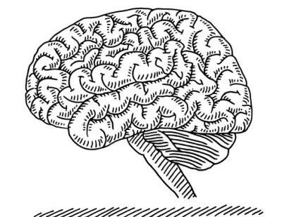 Langer effect Ritalin bij kinderen dan bij volwassenen