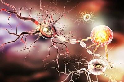 Opicapon bij de ziekte van Parkinson
