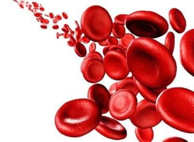 Orale anticoagulantia genegeerd