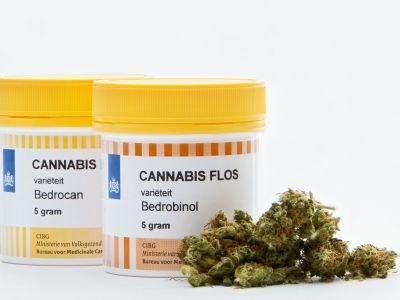 Bruins inventariseert mogelijkheden cannabisonderzoek