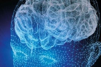 SSRI in utero beïnvloedt brein